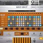 DM307_grid