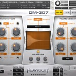 DM307_sample