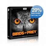 boom_birdsofprey